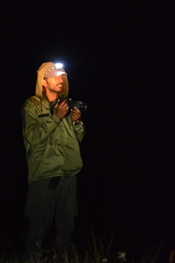 Author during a night survey Crop