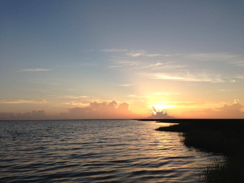 3 Dawn on the Marsh